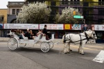 Guests enjoyed horse-drawn carriage rides throughout the streets of downtown Morristown.
