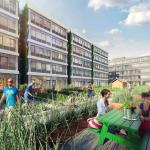 Renderings of URL, a new rental complex for young people on Staten Island