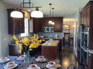 Model Kitchen at The Hills at Roosevelt Woods